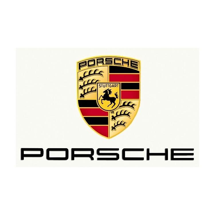 Macchina Auto Radiocomandata Re.El Toys Porsche RS GT3 Orange 1/14