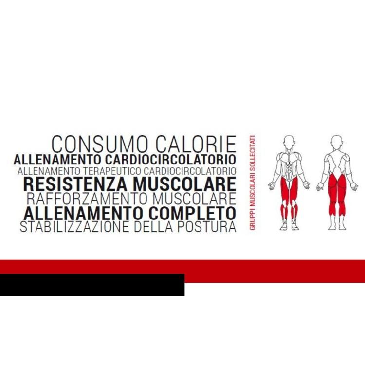 Tapis Roulant Elettrico Pieghevole JK Fitness TOP PERFORMA 196 HRC con Fascia Cardio inclusa